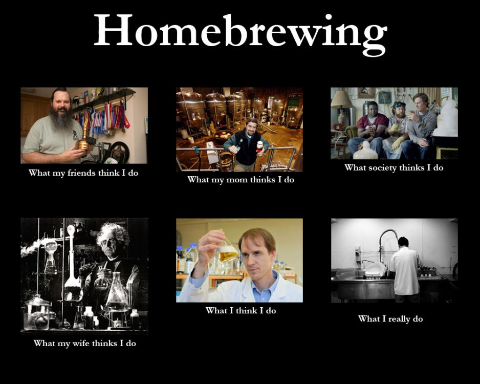 homebrew-homebrewing-think-i-do-meme.thumb.jpg.f86bcbea28eb67102e694983479eeea9.jpg